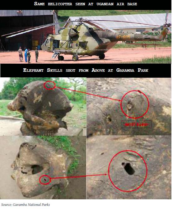 Ugandan Helicopter Hunting