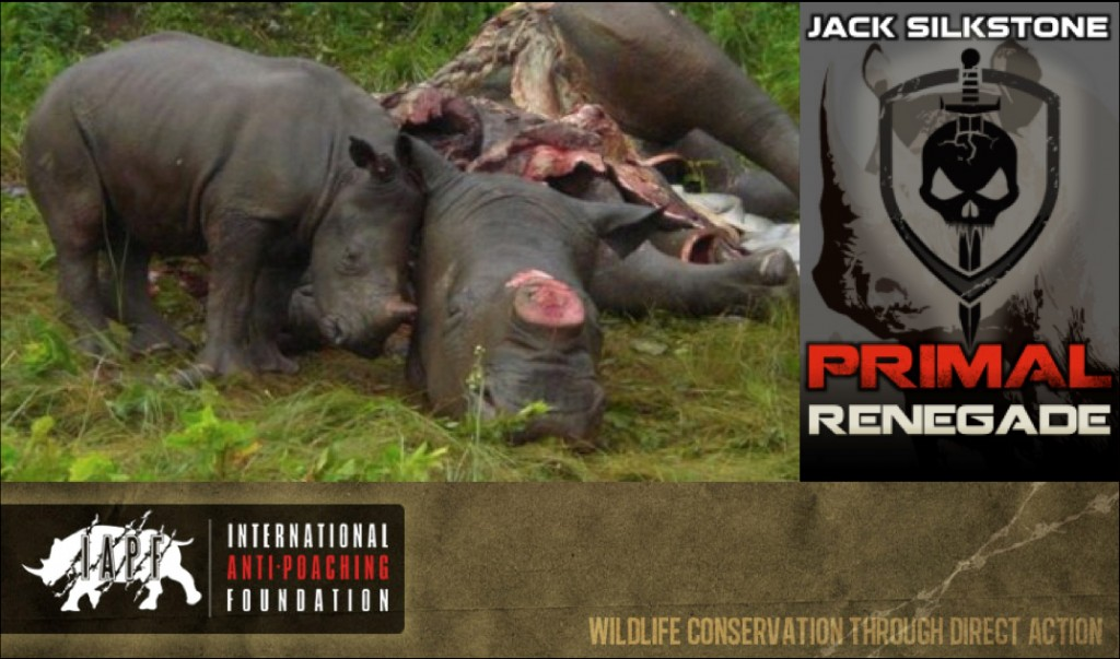 Don't let this happen. Support the IAPF.